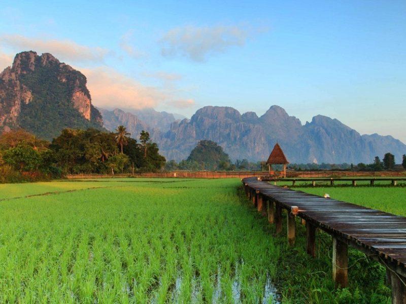 Guida Del Laos Le Risaie E La Natura