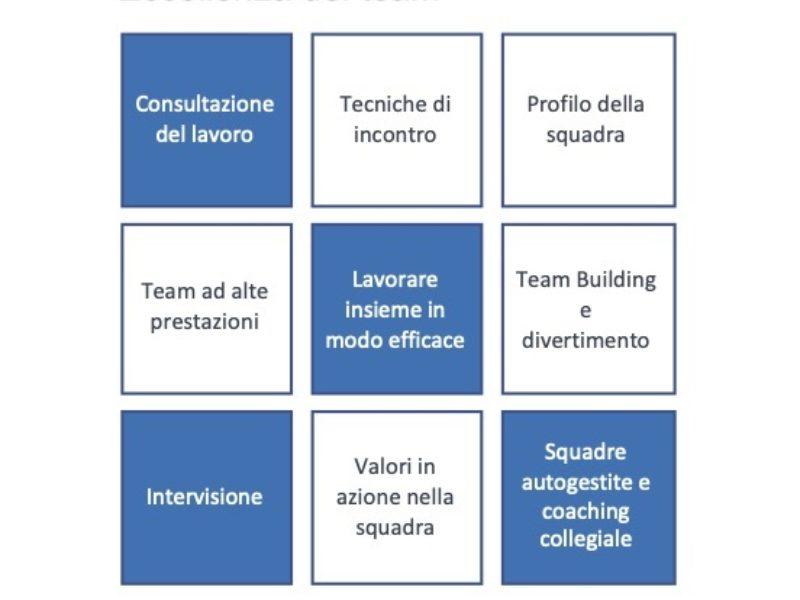 Moovs  Eccellenza Del Team